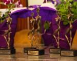 Esta semana se entregaron los premios Lola Mora.