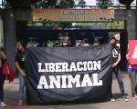 Piden el cierre del Zoo.