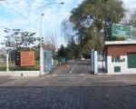 Buscan seguridad para el Parque Avellaneda.